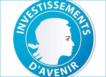 Logo du Programme des investissements d'avenir (PIA)