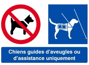 """Résultat de recherche d'images pour """"sigle chien interdit"""""""